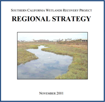 Original Regional Strategy