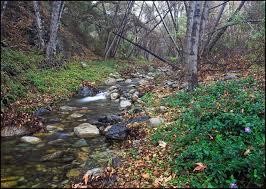 Trabuco_Creek