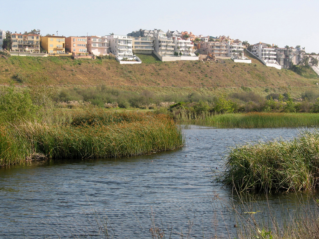 Ballona Wetlands Acquisition