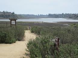 Upper Newport Bay Ecological Restoration, Final Design